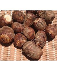 Organic taro 500g